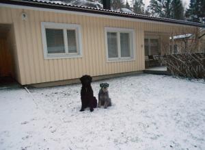 Uusi koti ja uusi lumi